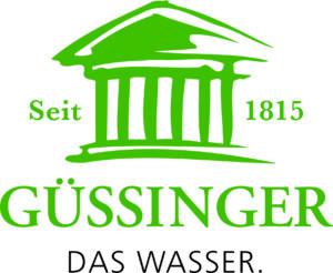 logo_guessinger_RZ